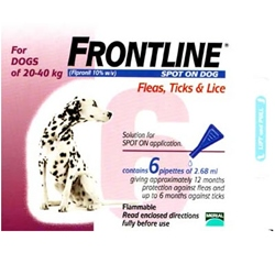 How Often Can I Apply Frontline To My Dog